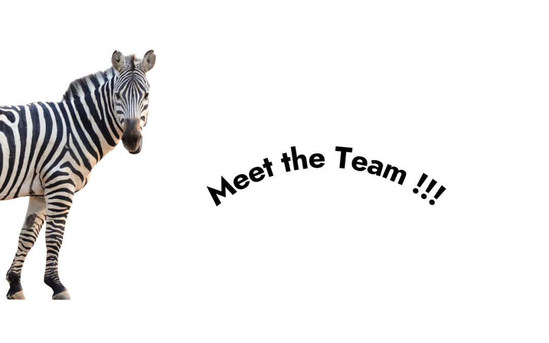 Exciting News !!! Meet the Team